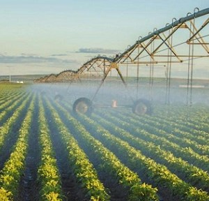 Precision Irrigation Systems Market is estimated to grow with a CAGR of 13% during the forecast period from 2016 to 2023