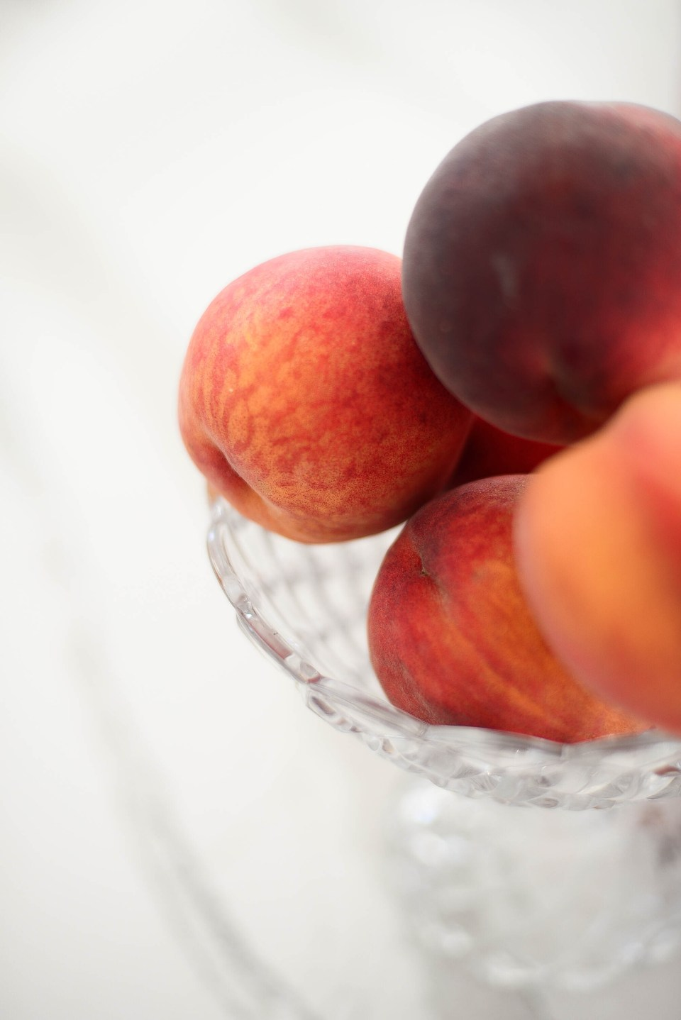 Peach Mimosa