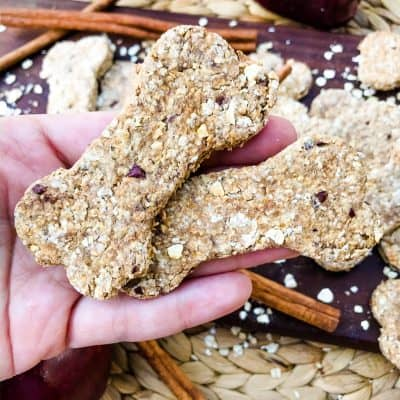 Oat Cinnamon Apple Dog Treats