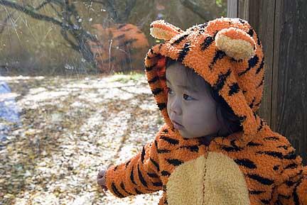 halloween2007zoo009.jpg