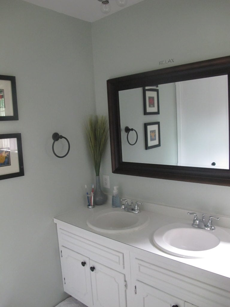 Artistic Sherwin Williams Sea Salt Behr Rainwashed Sea Salt Master Bathroommakeover After Thrift Diving Sherwin Williams Sea Salt Most Sherwin Williams Rainwashed Paint Color Sherwin Williams Rainwash houzz-03 Sherwin Williams Rainwashed