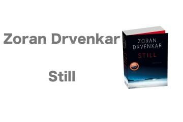 Still_Drvenkar