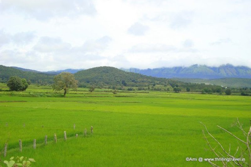 View of the Hills surrounding Chikmagalur