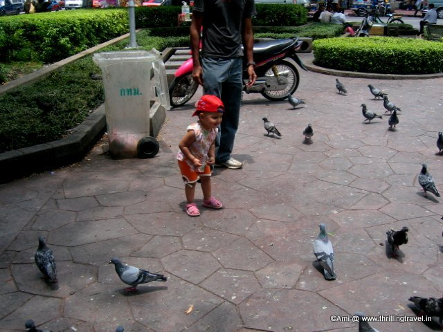 My kiddo with the Pigeons in Thailand