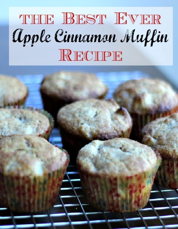 The Best Ever Apple Cinnamon Muffins