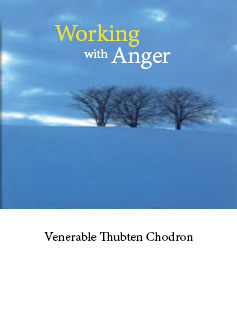 Cover of book Working with Anger.