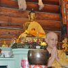 Venerable Chodron sitting in front of altar, in prayer.