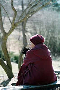 Venerable Chodron sitting outside, holding the cat Manjushri.