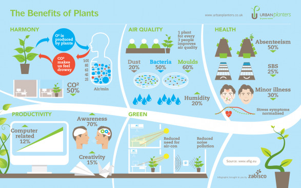 The Benefits of Plants