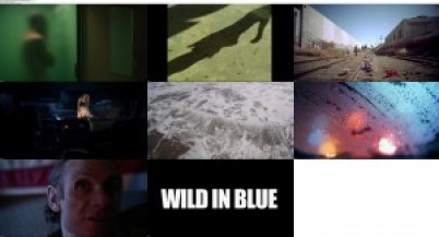 Download Subtitle indoWild in Blue (2014) BluRay 1080p