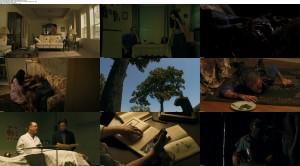 Blood Redd (2014) BluRay 720p