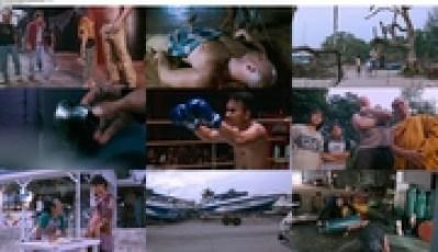 Download Subtitle indoMuay Thai Giant (2008) BluRay 720p