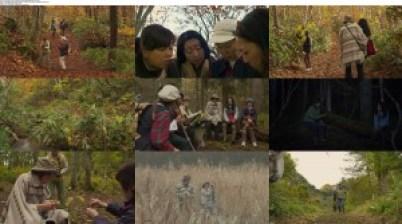 Download Subtitle indo englishGo See the Fall (2014) BluRay 720p