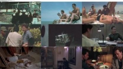 movie screenshot of Before Night Falls fdmovie.com