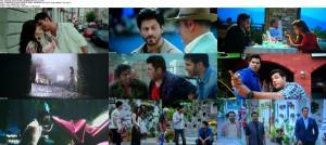 Dilwale (2015) DVDScr