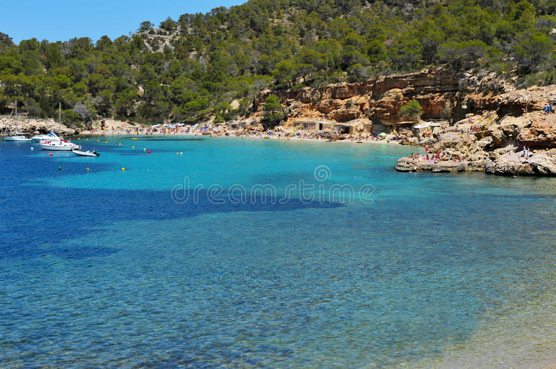 Cala Salada Beach In San Antonio  In Ibiza Island  Spain Stock Photo     Download Cala Salada Beach In San Antonio  In Ibiza Island  Spain Stock  Photo