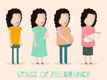 Infographic Background With Silhouette Of A Pregnant Woman Stock Vector - Illustration of life ...