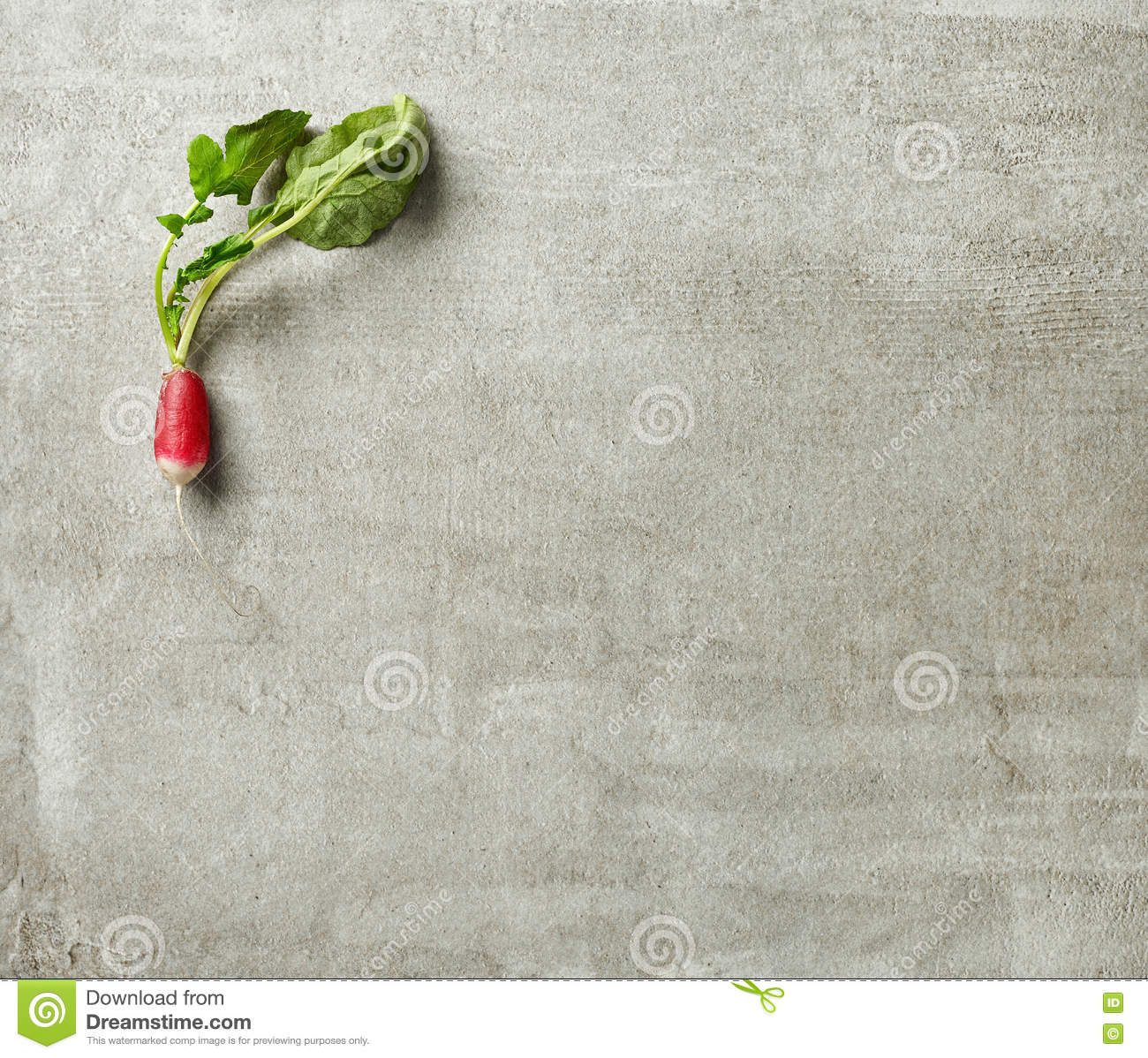 stock photo fresh raw radish gray kitchen table top view image gray kitchen table Fresh raw radish on gray kitchen table