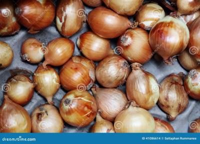 The Onions Very Fresh At Street Market Stock Photo - Image: 41086614