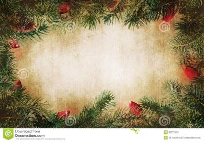 Pine Tree Branches With Christmas Lights Stock Image - Image of texture, christmas: 32271015