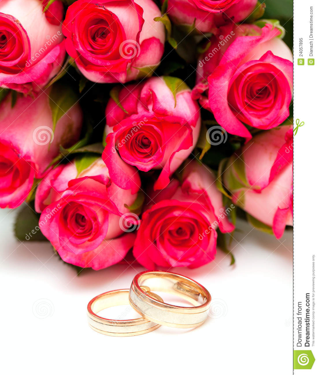 royalty free stock photo pink roses wedding rings isolated white image pink wedding rings Pink roses and wedding rings isolated on white