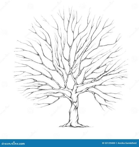 stock illustration tree wedding couple big tree crown illustration image wedding tree Tree for wedding couple with big tree crown