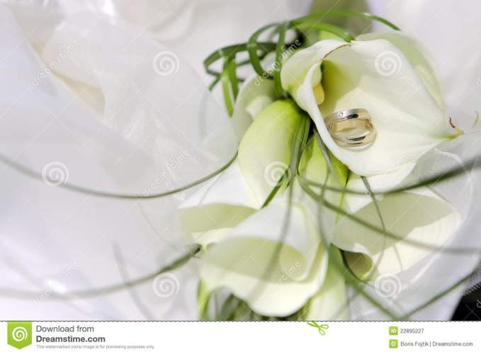 royalty free stock photography wedding rings flowers image flower wedding ring Wedding rings with flowers