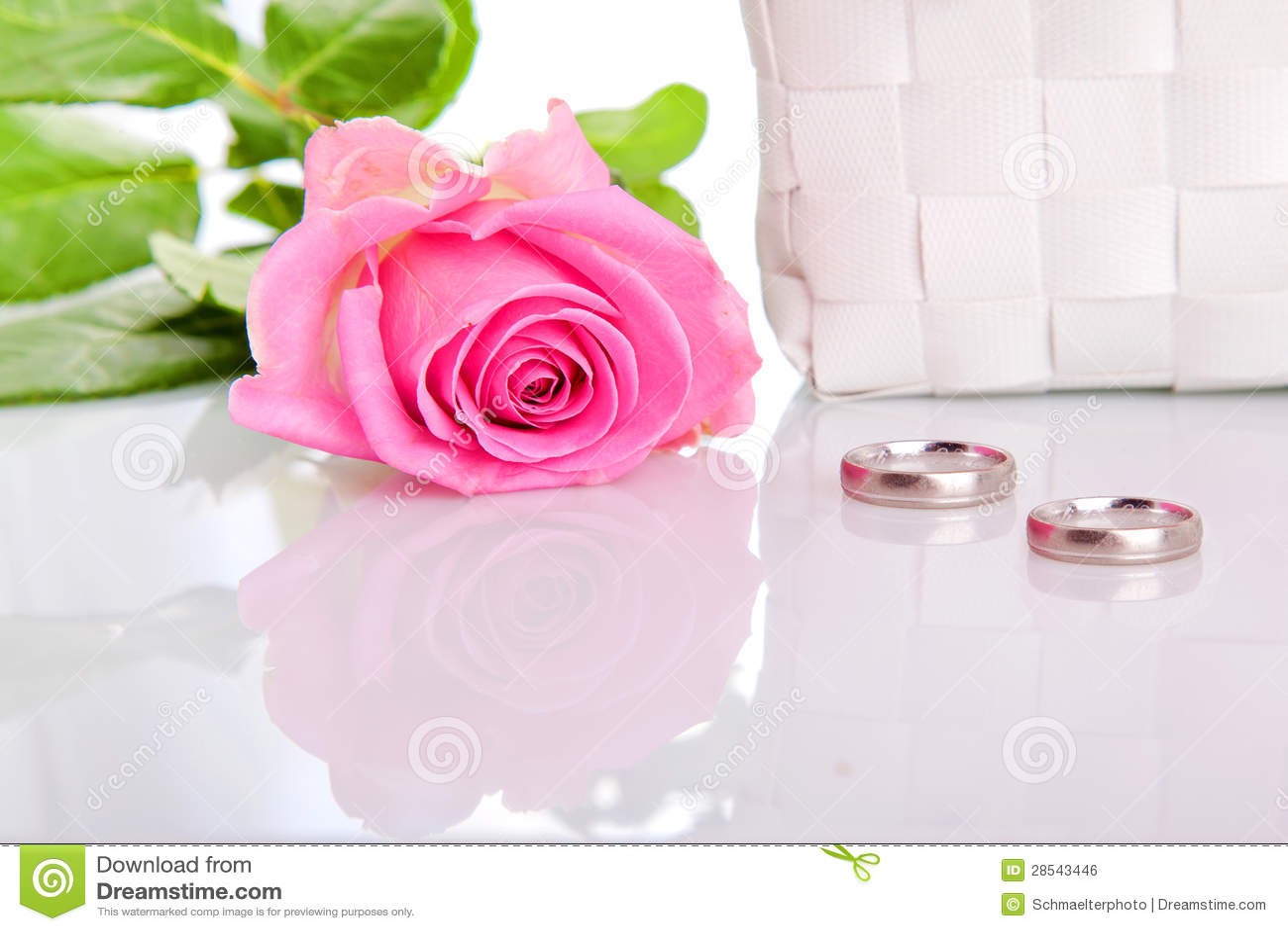 stock photo pink roses wedding rings image pink wedding rings Wedding rings and pink roses Royalty Free Stock Image