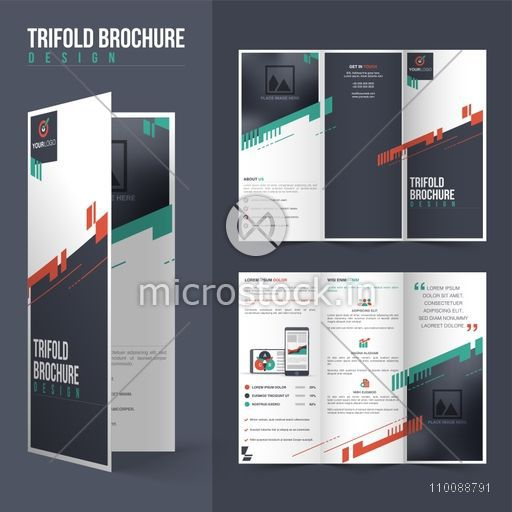 Front and back page presentation of Professional Tri Fold Brochure     Front and back page presentation of Professional Tri Fold Brochure design  with space to add