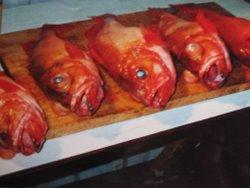 Diese Rotbarsche wurden alle auf einmal auf einem Beifänger gefangen.