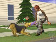 sims 2 mascotas