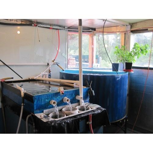 Medium Crop Of 200 Gallon Aquarium