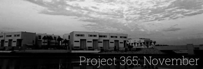 Project 365: November