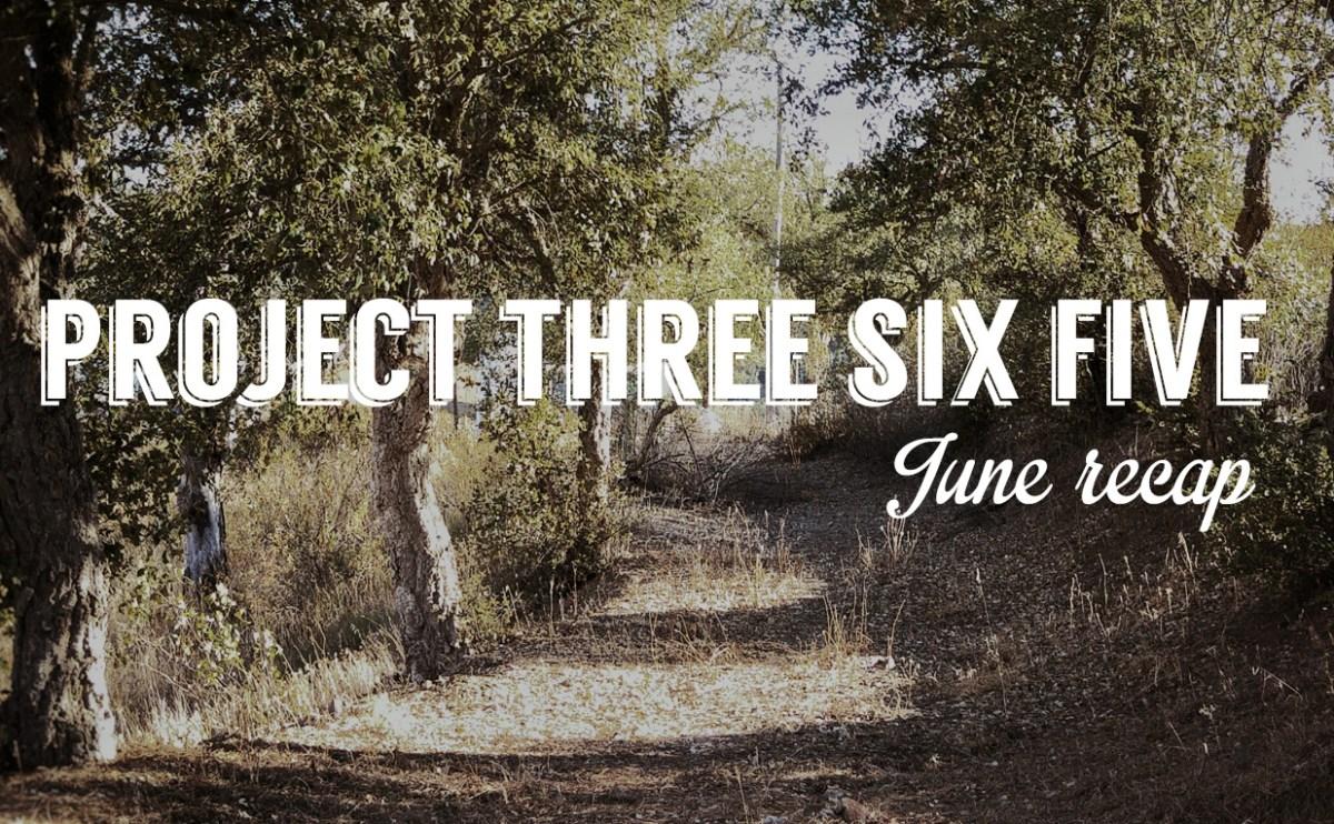 Project 365 - 2015: June Recap