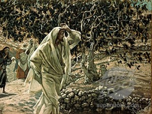 "James Tissot, ""The Accursed Fig Tree,"" 1886-96."