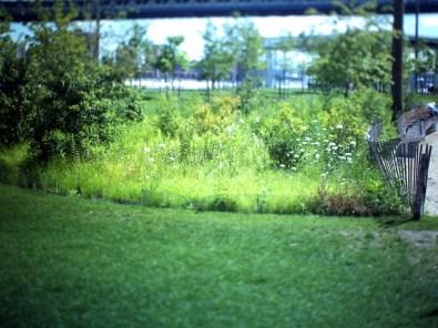 Brooklyn Bridge Park 01