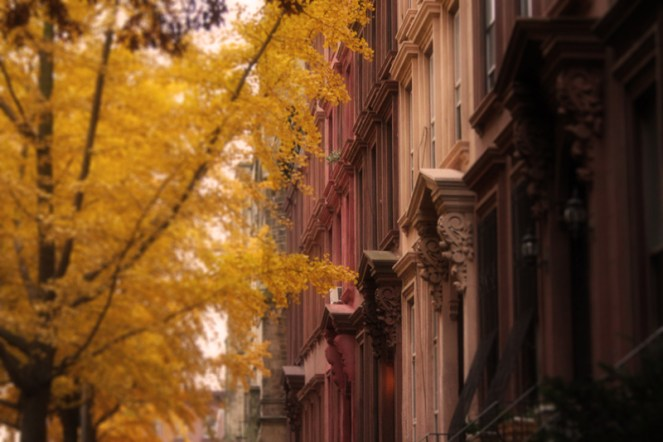 Brooklyn Seasons (2)