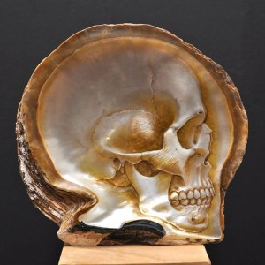 www.thisiscolossal.com/2014/06/mother-of-pearl-shell-skull-carvings-by-gregory-halili/