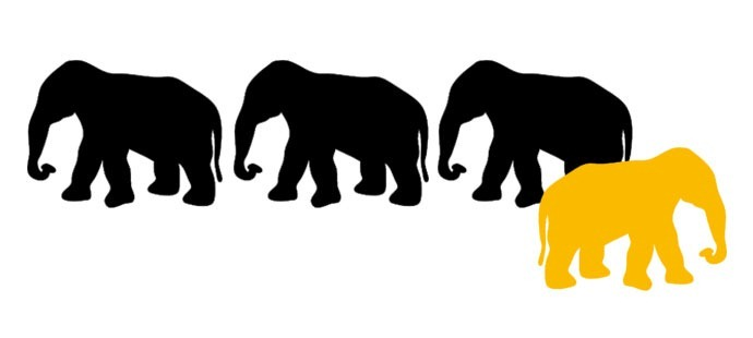 database-elephants-banner