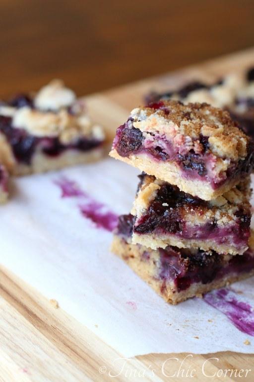 Blueberry Crumb Bars09