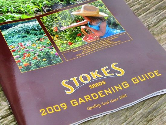 First seed catalog of the season