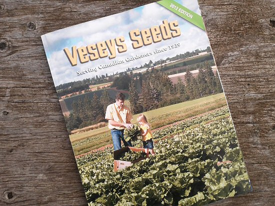 First seed catalog to arrive