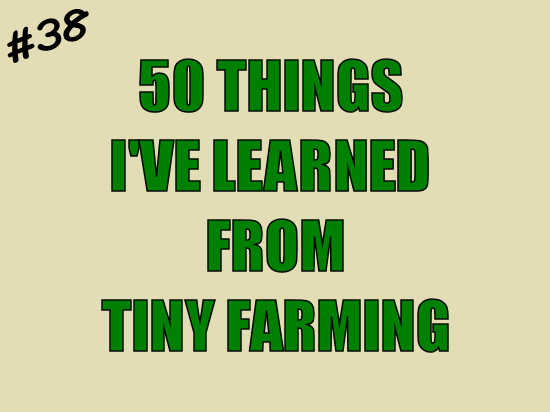 50 Things I've Leaned from Tiny Farming: #38