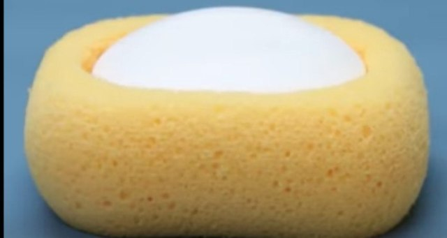 soap dish sponge