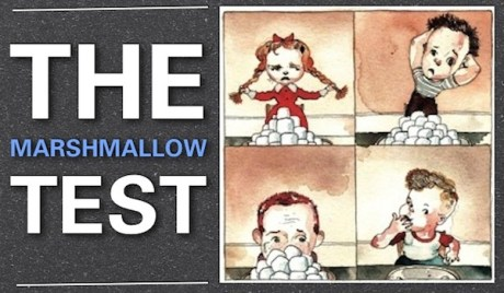 whats-your-marshmallow-The-Marshmallow-Test