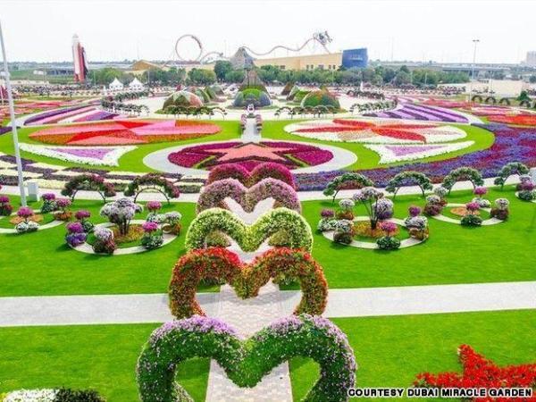 dubai-miracle-garden2
