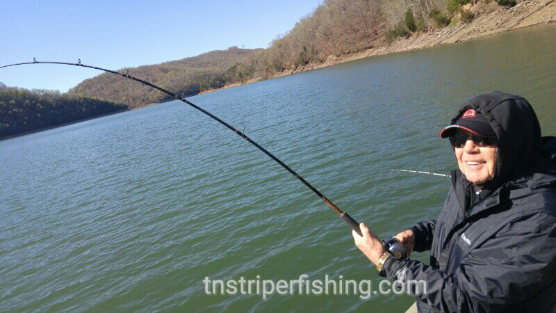 Norris lake dave dave james jeff 4 3 2016 jay 39 s for Tennessee fishing guide