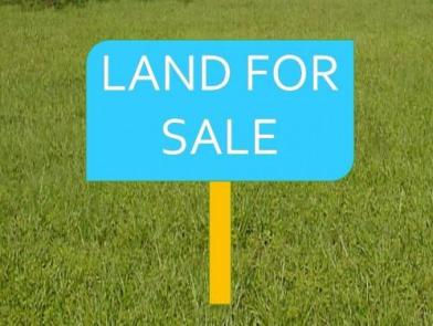 land for sale in palmiste 2017