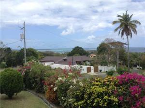 tobago house for sale view