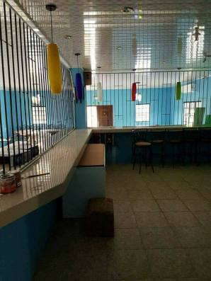 house for sale in sangre chiquito